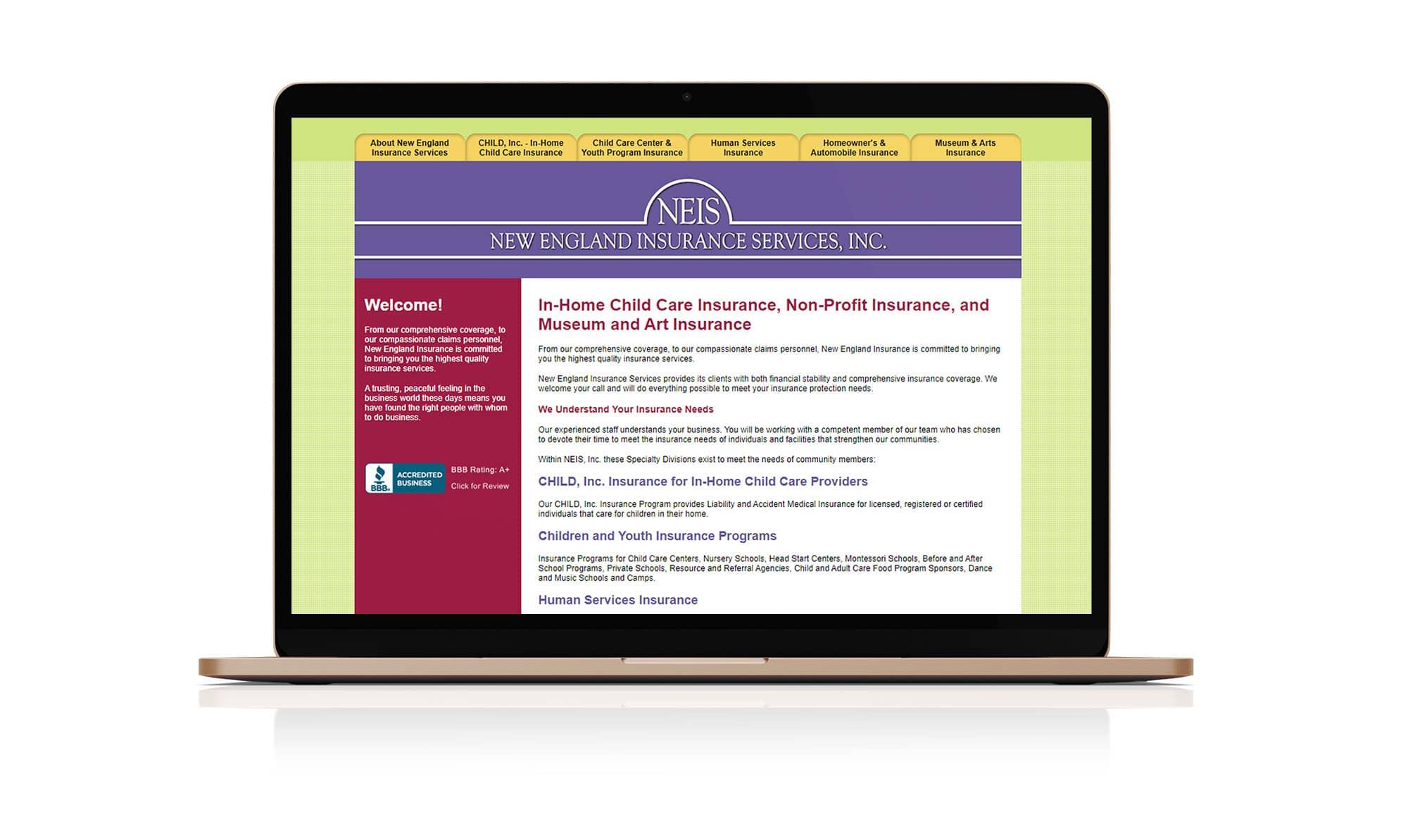 neis_website_before